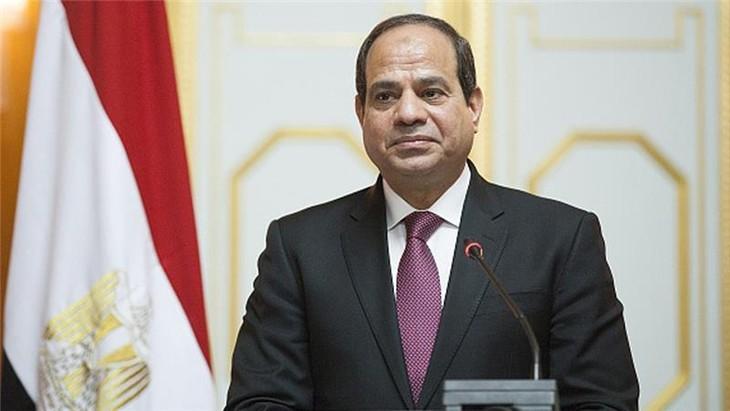 """越南是埃及""""东向""""政策中的优先之一 - ảnh 1"""
