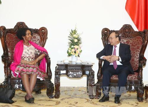阮春福会见乌克兰外长和南非国际关系与合作部长 - ảnh 1