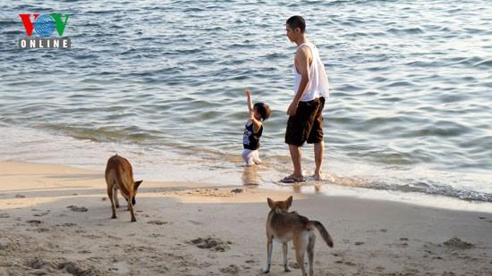 Blaues Meer in Phu Quoc - ảnh 12