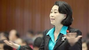 Das Parlament entlässt Abgeordnete Dang Thi Hoang Yen - ảnh 1