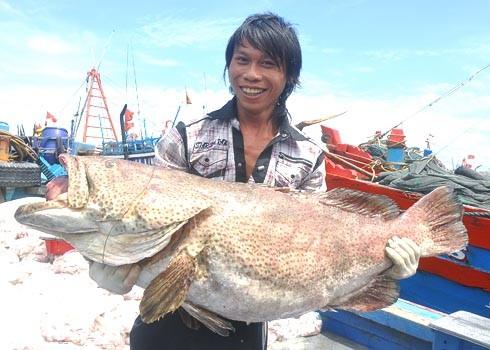 Aufbau der maritimen Wirtschaft in Vietnam - ảnh 1