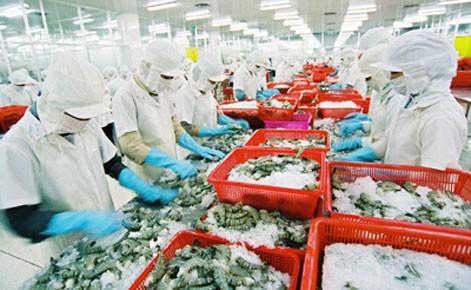 Vietnam exportierte 2013 Garnelen im Wert von 2,8 Milliarden US-Dollar  - ảnh 1