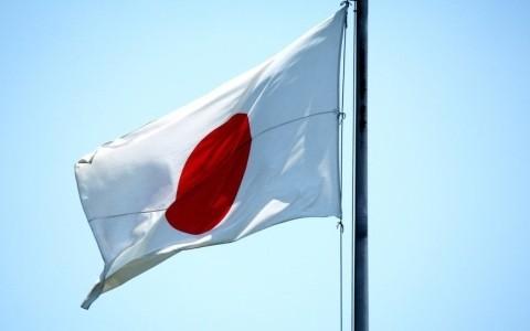 Japan: Demonstration gegen US-Stützpunkt auf Okinawa - ảnh 1