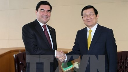 Staatspräsident Truong Tan Sang trifft Staats- und Regierungschefs anderer Länder - ảnh 1