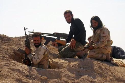 Waffenhilfe ist keine gute Maßnahme für die Allianz gegen den IS - ảnh 1