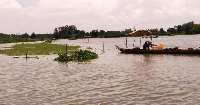 Bauern im Mekong-Delta bei der Anpassung an fehlende Überschwemmungen - ảnh 1