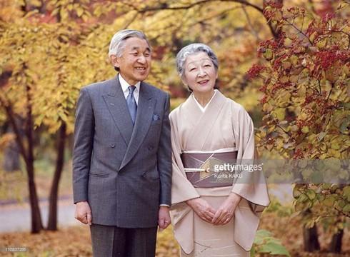 Vietnam und Japan bereiten sich auf den Vietnambesuch des japanischen Königs vor - ảnh 1