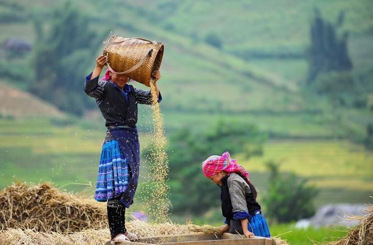 Die Volksgruppe der Mong bewahrt Traditionen - ảnh 1