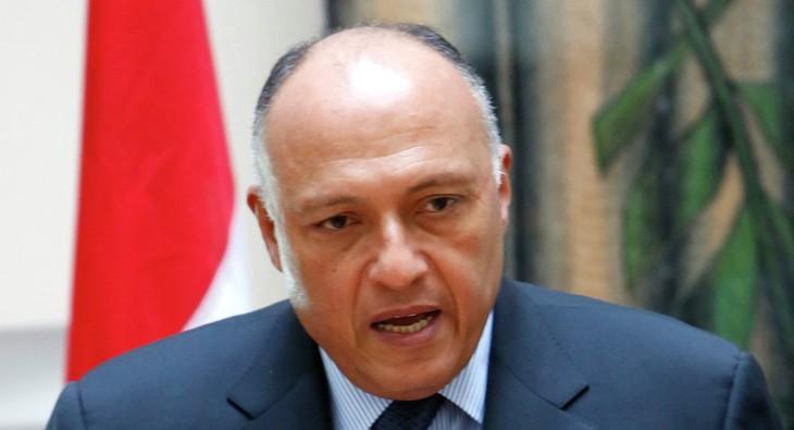 Ägypten und Vereinigte Arabische Emirate etablieren politische Konsultationen - ảnh 1