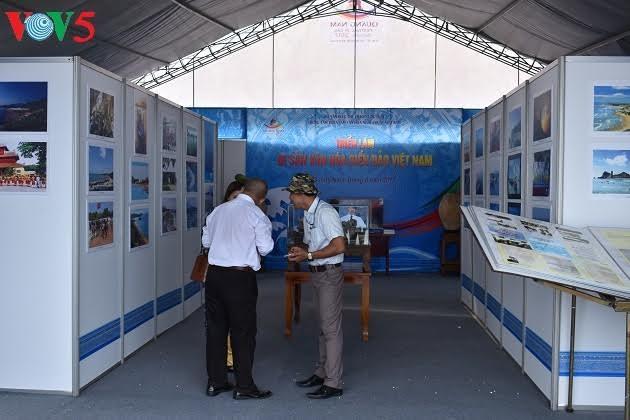 Ausstellung zur Ehrung der kulturellen Werte des Meeres und der Inseln Vietnams - ảnh 1
