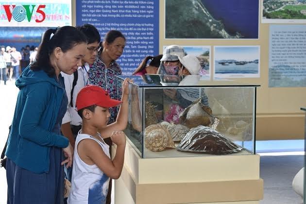 Ausstellung zur Ehrung der kulturellen Werte des Meeres und der Inseln Vietnams - ảnh 2