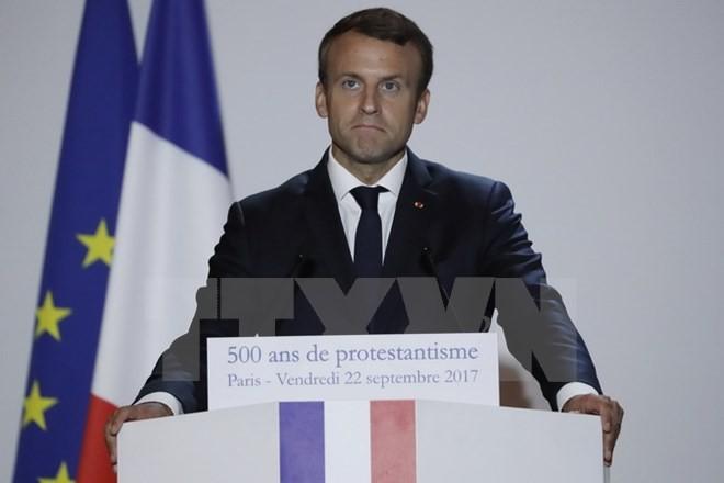 Frankreichs Präsident legt Plan zur Erneuerung Europas vor - ảnh 1