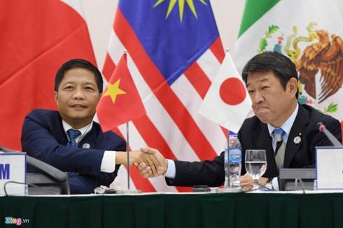 CPTPP – Das Abkommen öffnet neue Chance für die globale Zusammenarbeit - ảnh 1