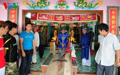 越南中部和西原地区各地加强旅游合作 - ảnh 1