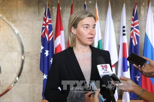 欧盟愿意提升与东盟的对话关系级别 - ảnh 1