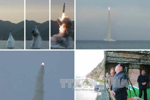朝鲜成功试射潜射弹道导弹 - ảnh 1