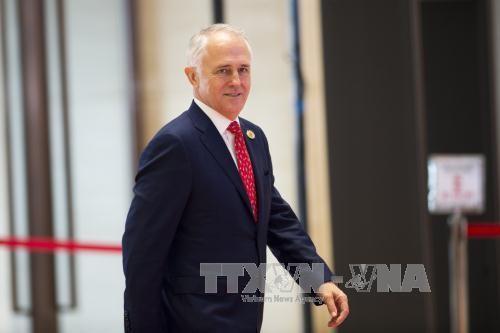 澳大利亚总理特恩布尔邀请东盟各国领导人出席在堪培拉举行的特别峰会 - ảnh 1