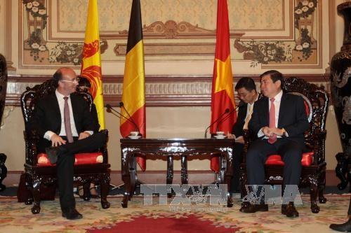 胡志明市领导人会见比利时瓦隆-布鲁塞尔联邦首席大臣德莫特 - ảnh 1