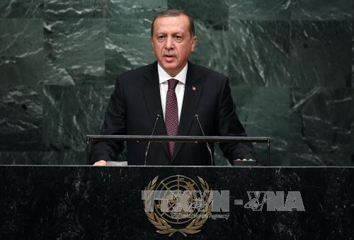 """土耳其称愿有条件与美国合作打击""""伊斯兰国"""" - ảnh 1"""