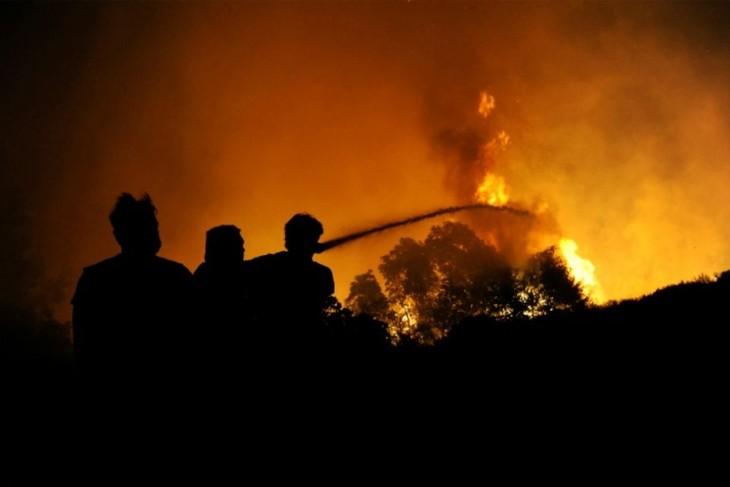 La Grèce lutte contre trois grands fronts d'incendie - ảnh 1