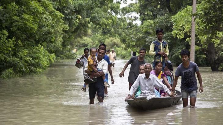 Inondations meurtrières en Inde, au Népal et au Bangladesh - ảnh 1