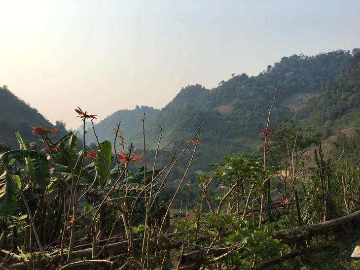 Des projets communautaires qui épanouissent Pù Bin - ảnh 2