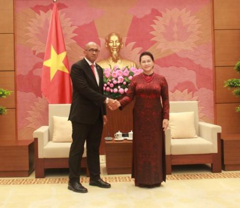 Nguyen Thi Kim Ngan reçoit l'ambassadeur cubain - ảnh 1
