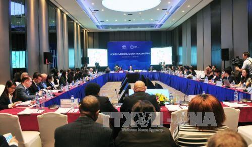 APEC 2017: Ouverture de la 2ème réunion du groupe de travail sur la santé - ảnh 1