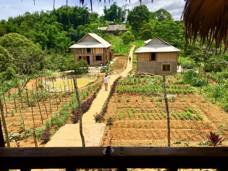 Des projets communautaires qui épanouissent Pù Bin - ảnh 11