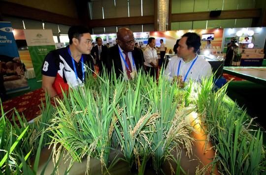 APEC 2017: Vernissage d'une exposition sur l'agriculture - ảnh 1