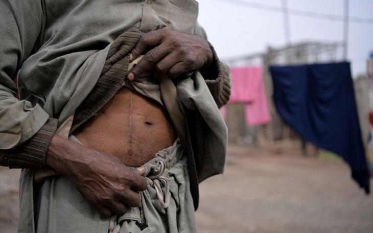 Réseau de trafic d'organes en Egypte: plusieurs arrestations - ảnh 1