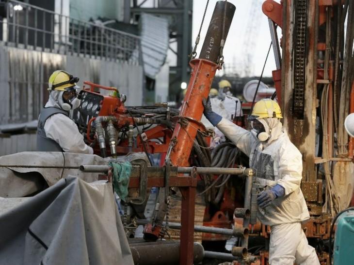 Fukushima: le mur de glace souterrain de 1,5 km bientôt fini - ảnh 1