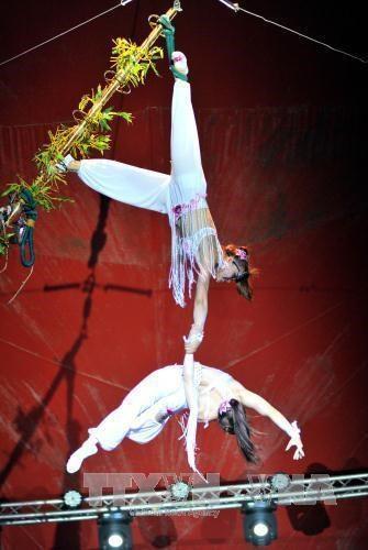 Quand le cirque vietnamien se produit à l'étranger - ảnh 2