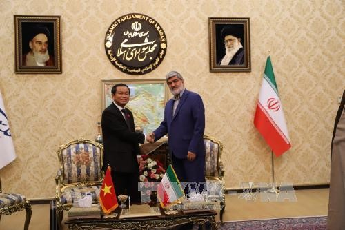 Vers une coopération parlementaire accrue entre le Vietnam et l'Iran - ảnh 1
