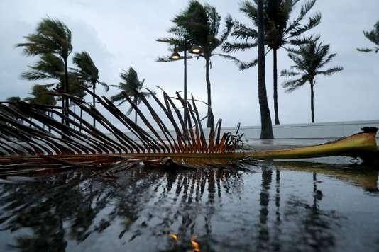 Ouragan Irma: l'état de catastrophe naturelle déclaré en Floride - ảnh 1