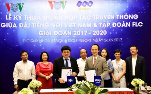 Le président de la Voix du Vietnam en déplacement à Binh Dinh - ảnh 3