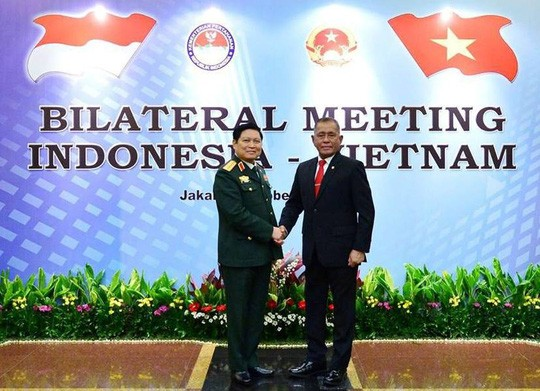 Le Vietnam et l'Indonésie renforcent leur coopération dans la défense - ảnh 1