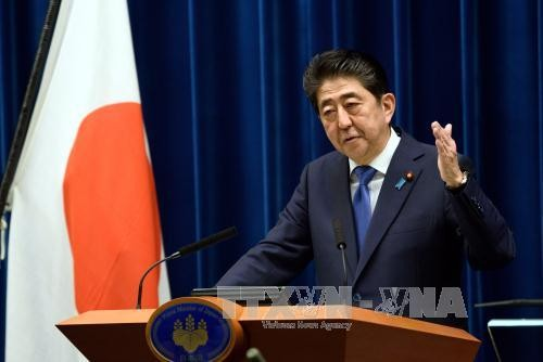 Législatives au Japon: Shinzo Abe reconduit à la tête du gouvernement - ảnh 1