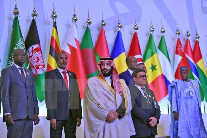 Lancement à Ryad d'une coalition anti-terroriste de pays musulmans - ảnh 1