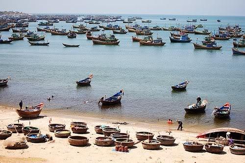 Die Freude des Fischerdorfs Vam Lang nach erfolgreicher Fischerei-Ernte - ảnh 1