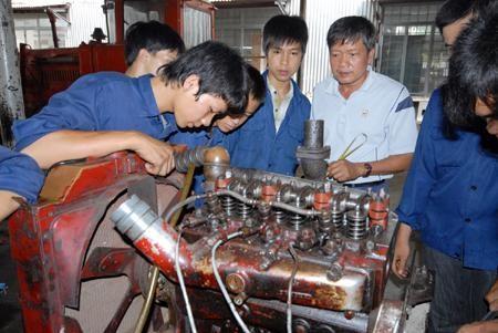 Vietnam setzt die Jugendstrategie bis 2020 um - ảnh 1