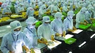 Die Industrie- und Handelskammer veröffentlicht ihren Vorjahresbericht - ảnh 1