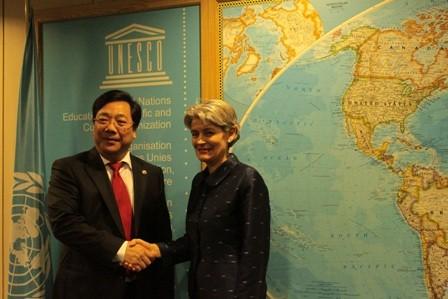 Vietnam erfüllt Aufgaben als Mitglied des Zentralrates der UNESCO - ảnh 1