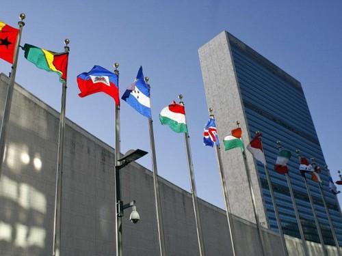 Vietnam wird würdiges Mitglied des UN-Menschenrechtsrats - ảnh 1