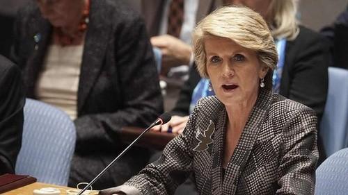 Australien kritisiert Luftverteidigungszone durch China - ảnh 1