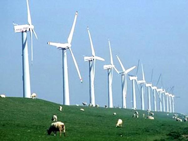 Unternehmensforum zum Kampf gegen Klimawandel - ảnh 1