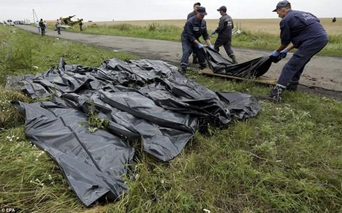 Politische Interessen hinter MH17-Tragödie - ảnh 1