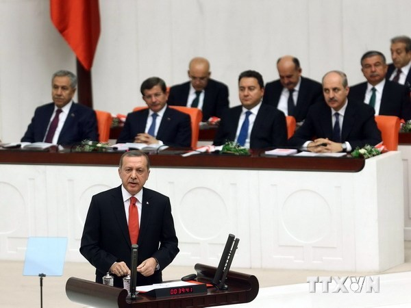 Türkeis Präsident Erdogan fordert Bodenoffensive gegen den IS - ảnh 1
