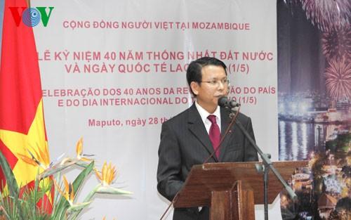 Aktivitäten im Ausland zum 40. Jahrestag der Vereinigung Vietnams  - ảnh 1