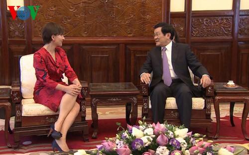 Staatspräsident Truong Tan Sang trifft neue Botschafter  - ảnh 1